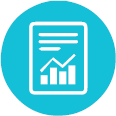 Audit Reports Icon
